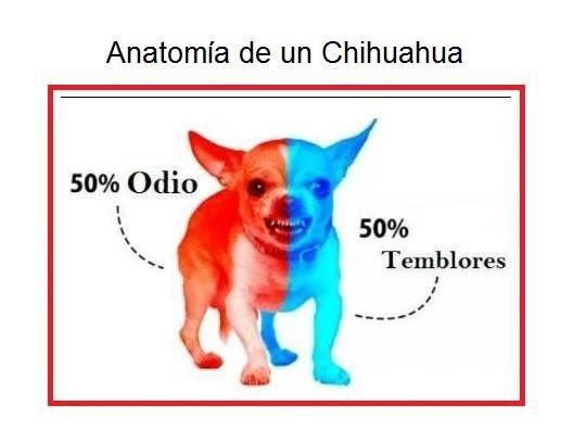 Marcianadas_212_0101160341 (136)