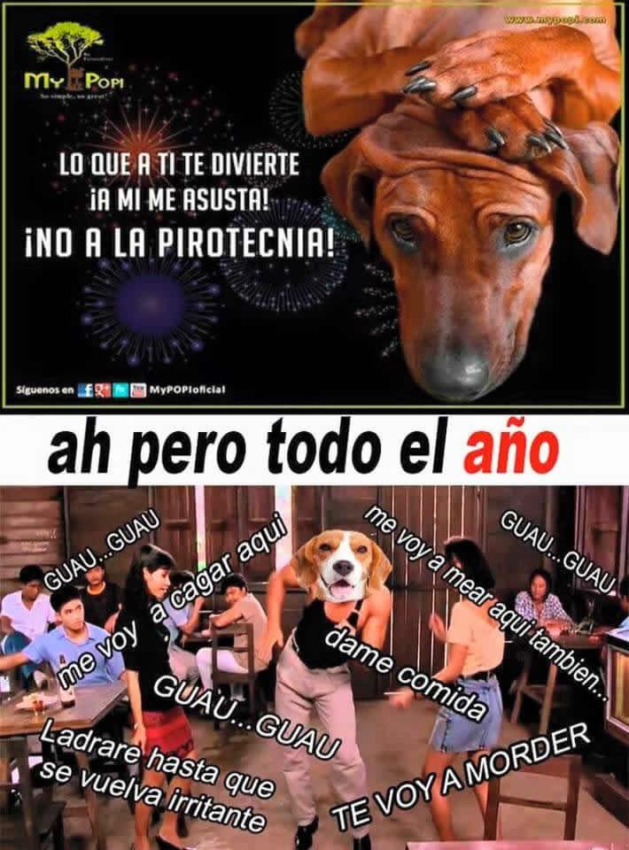 Marcianadas_212_0101160341 (69)