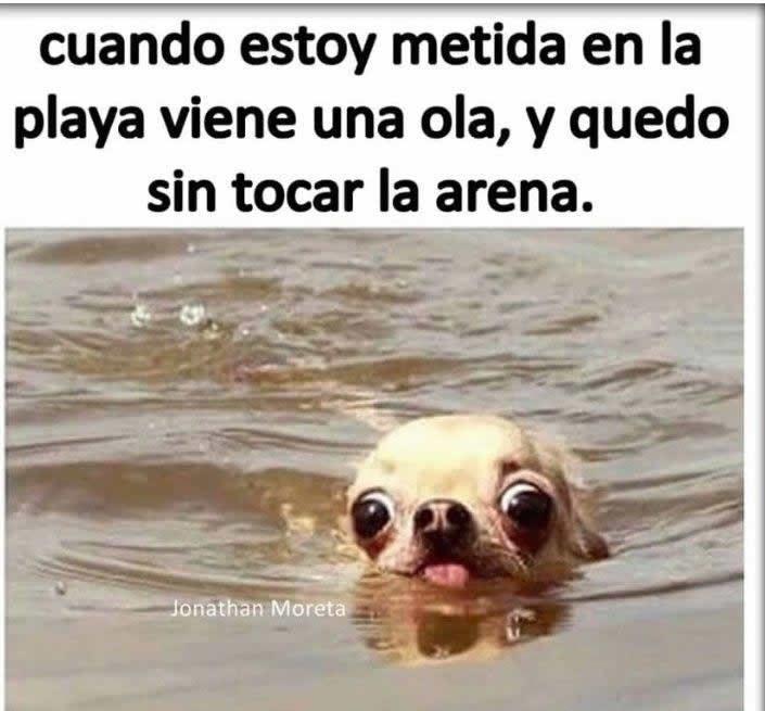 Marcianadas_215_22011600 (135)