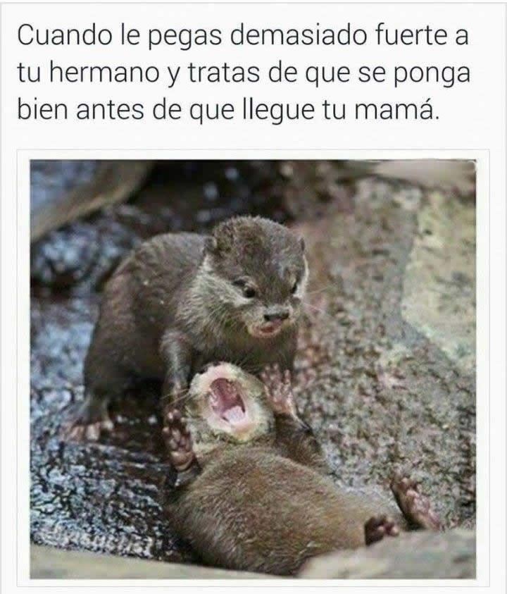 Marcianadas_215_22011600 (152)