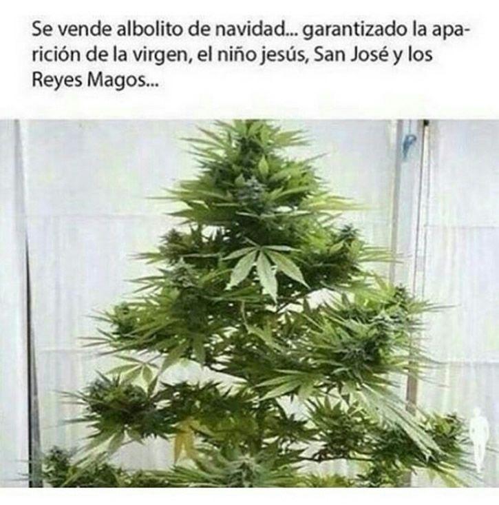 Marcianadas_215_22011600 (29)