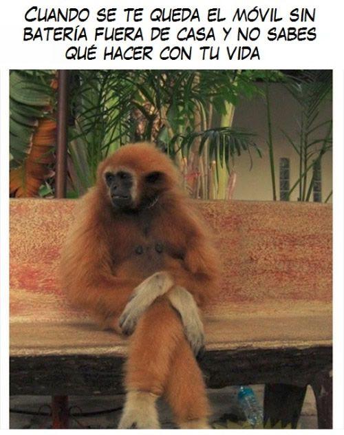 Marcianadas_217_0502161251 (13)