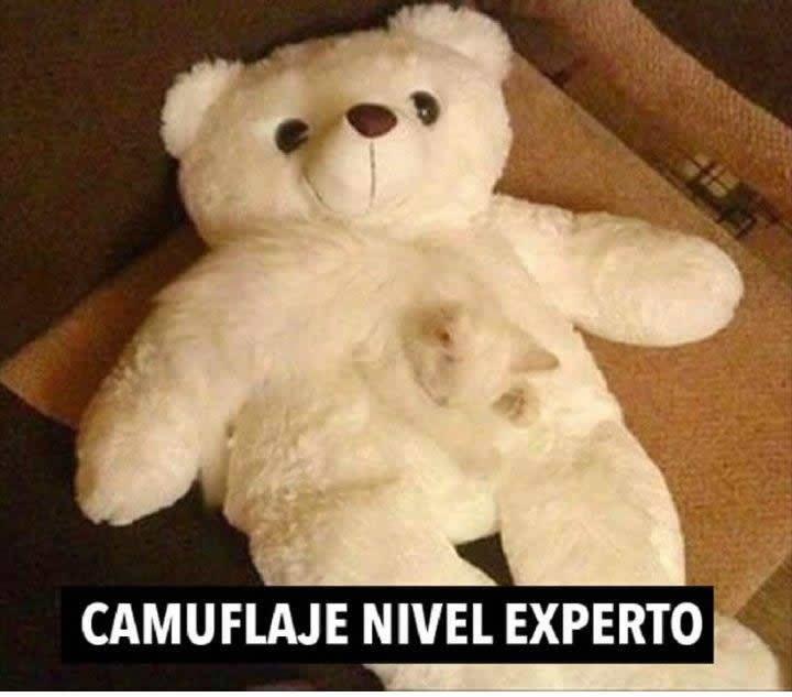 Marcianadas_217_0502161251 (132)