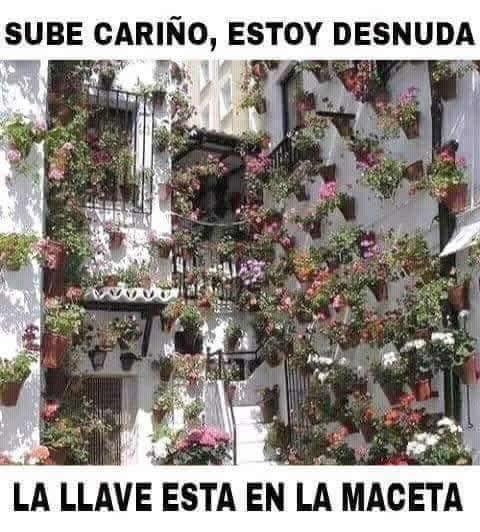 Marcianadas_217_0502161251 (18)