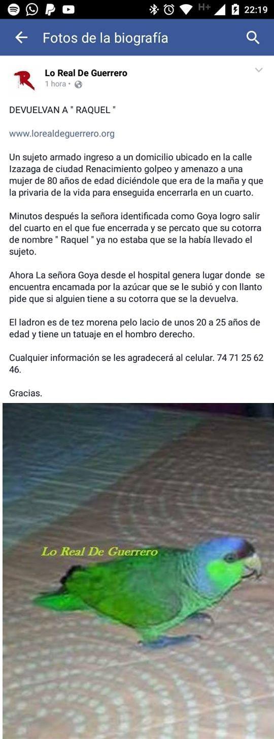 Marcianadas_217_0502161251 (33)