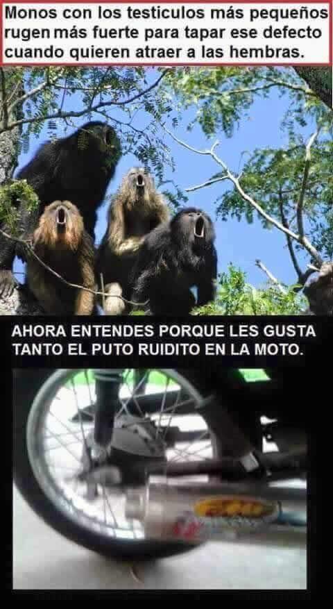 Marcianadas_219_1902160123 (15)