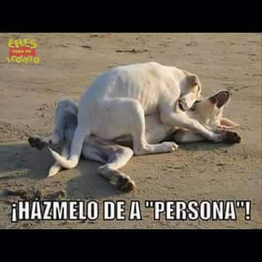 Marcianadas_219_1902160123 (163)