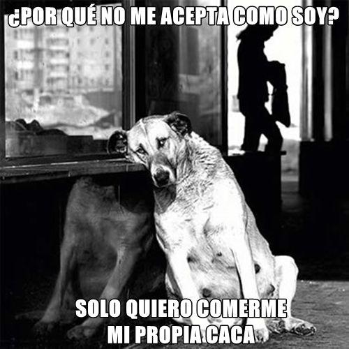 Marcianadas_219_1902160123 (2)