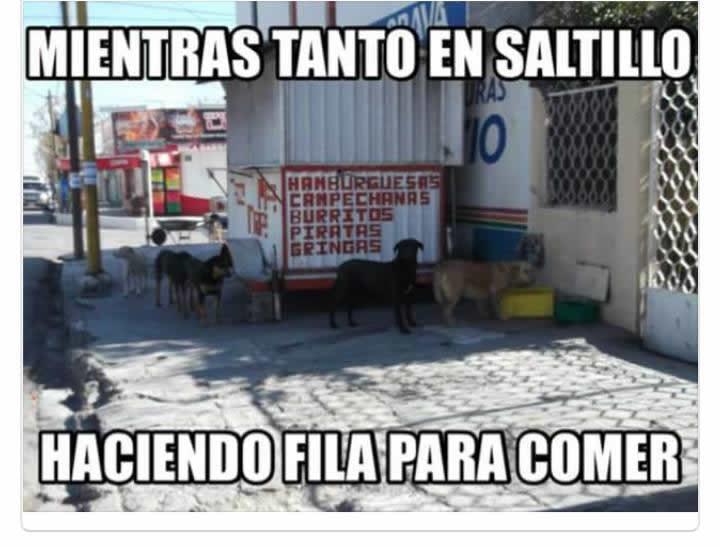 Marcianadas_219_1902160123 (223)