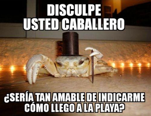 Marcianadas_219_1902160123 (312)