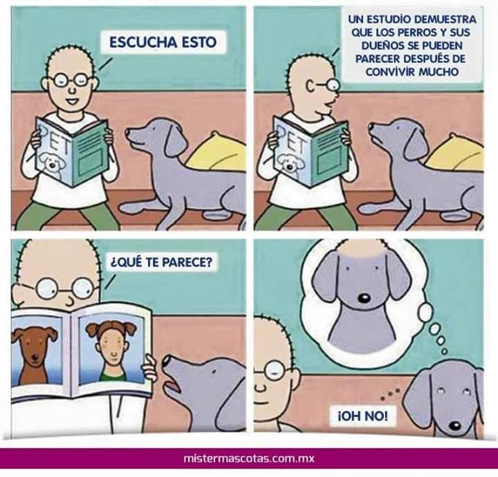 Marcianadas_220_2602161121 (26)