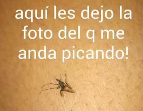 Marcianadas_220_2602161121 (5)