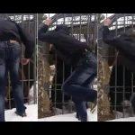 Un oso le arranca el brazo a un hombre, este es el video