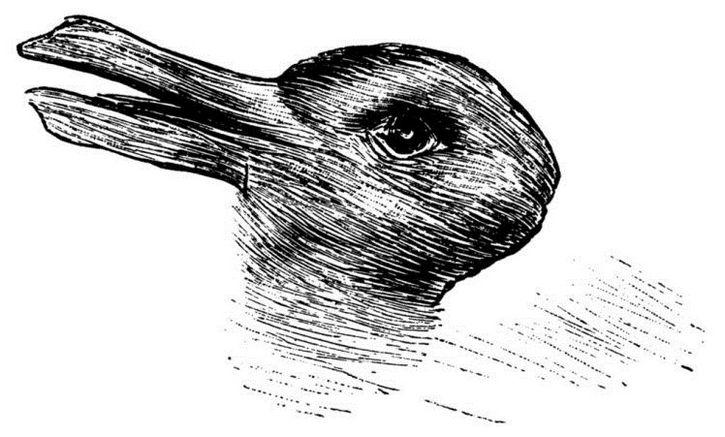 ilusion optica conejo pato