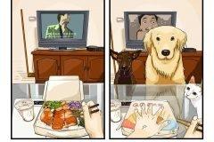 Ilustraciones sobre la vida antes y después de una mascota