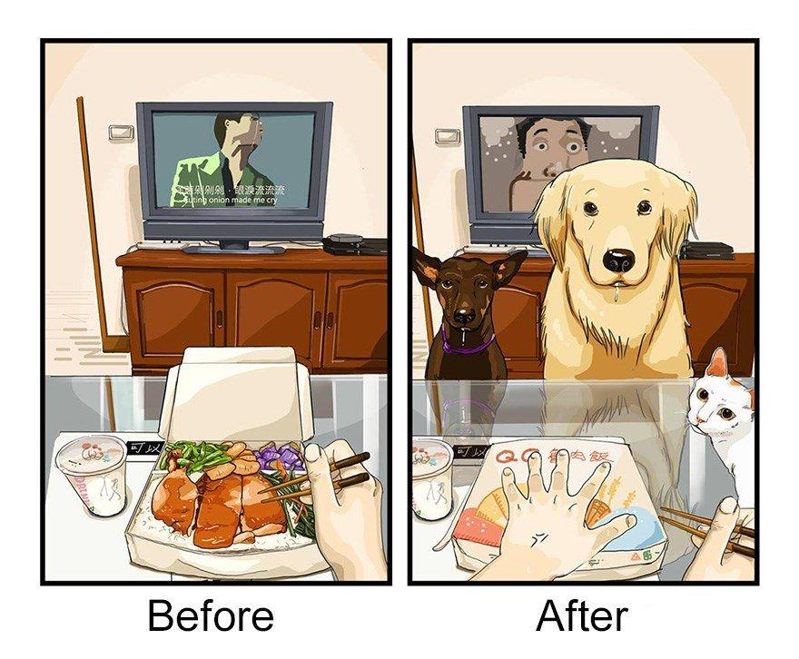 ilustraciones mascotas antes y despues (1)