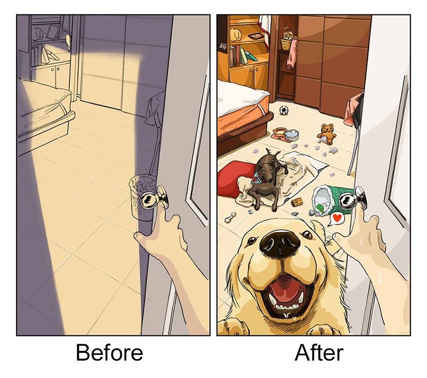 ilustraciones mascotas antes y despues (3)