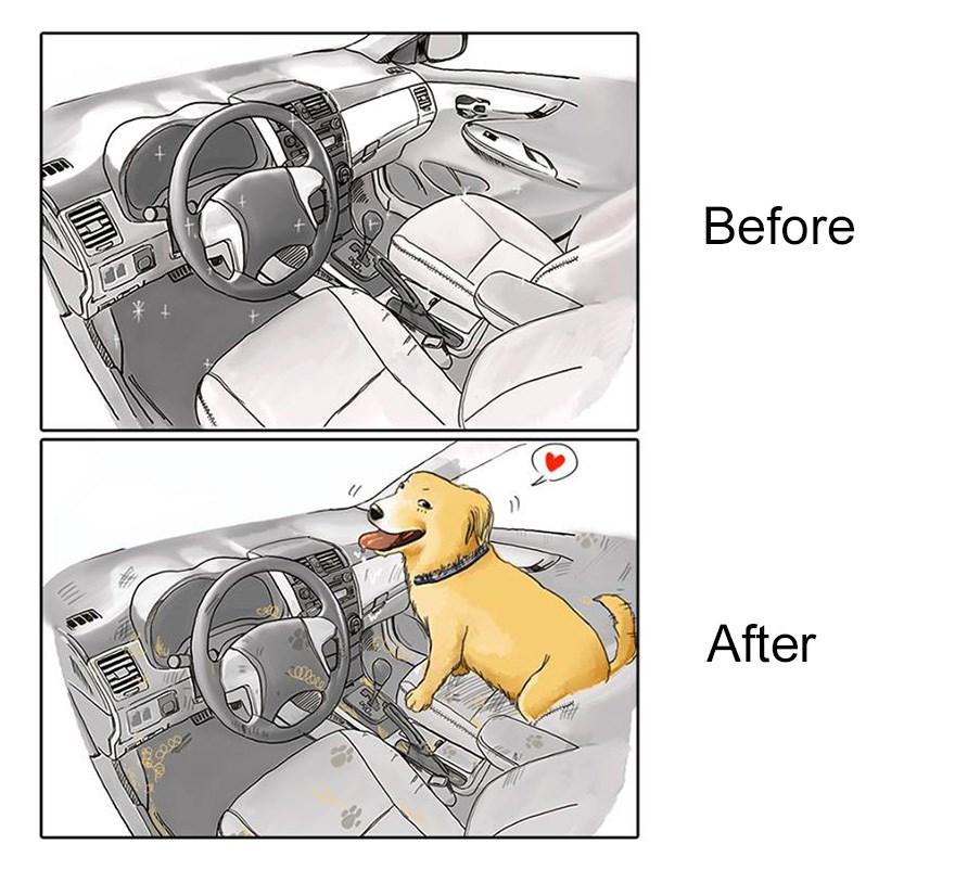 ilustraciones mascotas antes y despues (4)