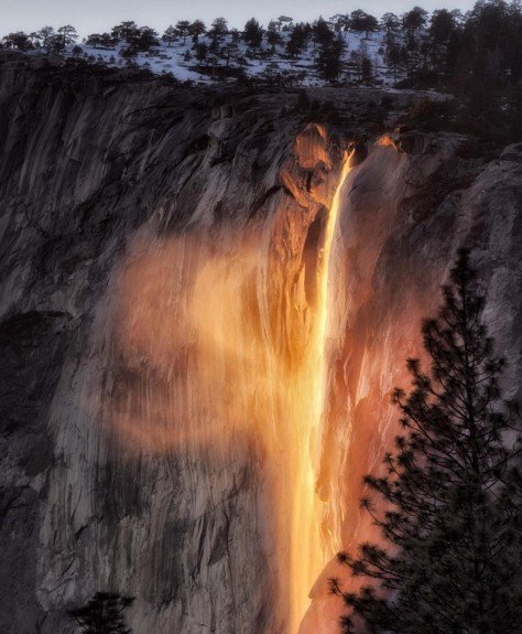yosemite Horsetail (3)