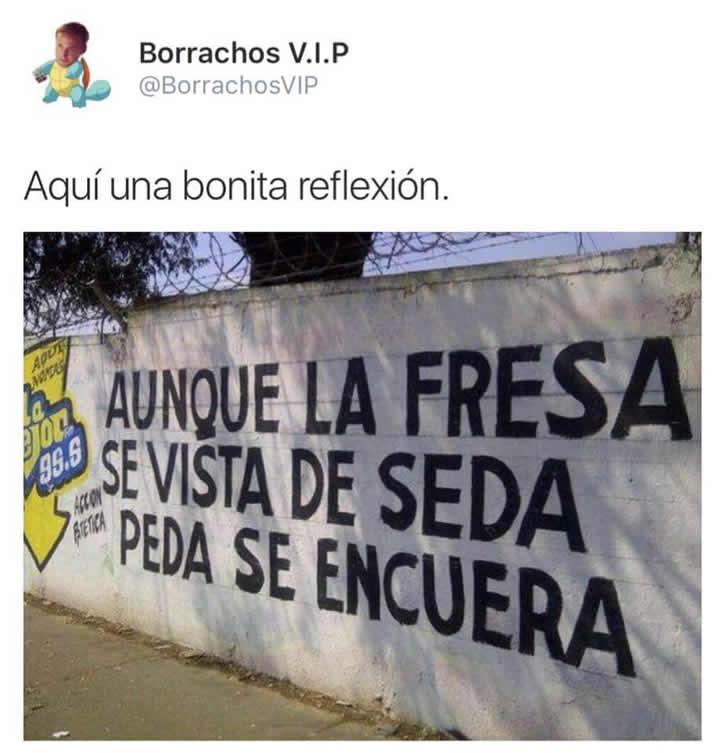 Marcianadas_221_0403161248 (29)