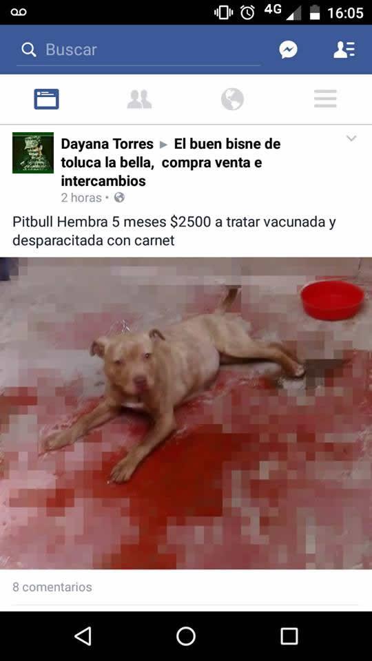 Marcianadas_221_040316_1057 (127)