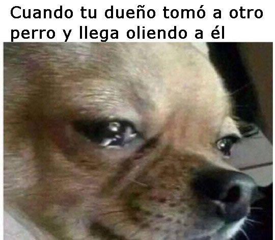Marcianadas_221_040316_1057 (33)