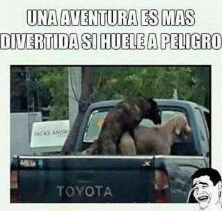 Marcianadas_223_1803161332 (16)