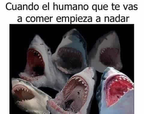 Marcianadas_224_240316115 (2)