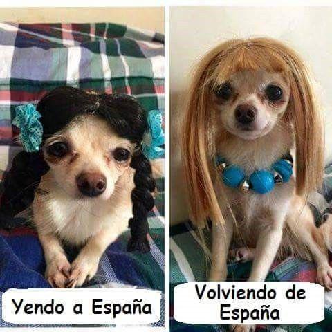 Marcianadas_224_240316115 (9)