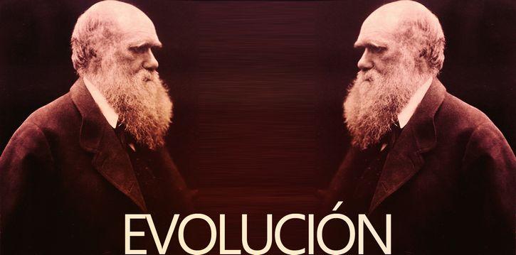 evolucion c darwin