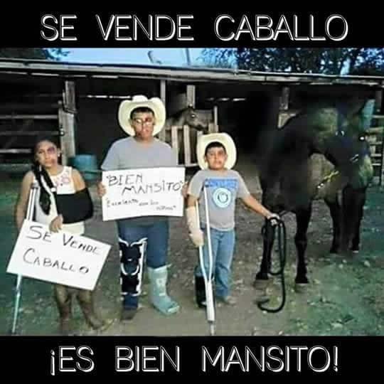 Marcianadas_225_0104161220 (65)