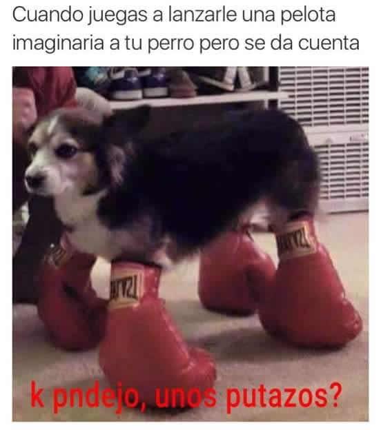 Marcianadas_226_0804160110 (150)