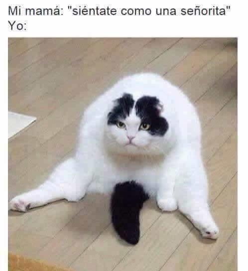 Marcianadas_226_0804160110 (32)