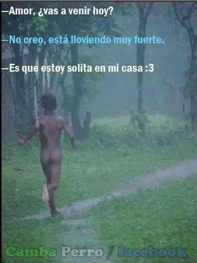 Marcianadas_227_1504160919 (23)
