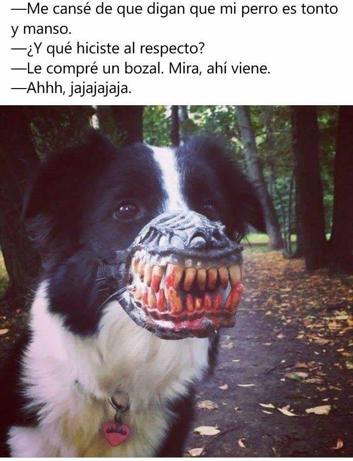 Marcianadas_227_150416123800 (115)