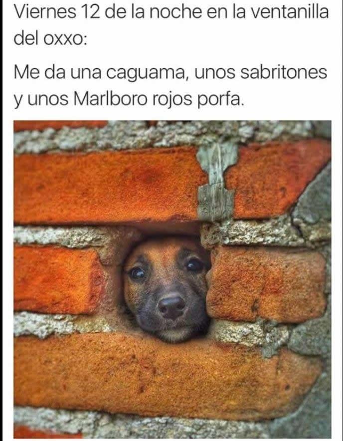 Marcianadas_227_150416123800 (68)