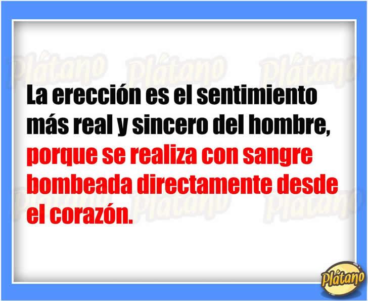 Marcianadas_228_2204160912 (15)