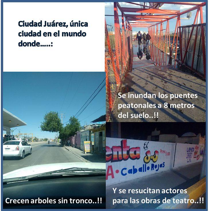 Marcianadas_229_2904160000 (121)
