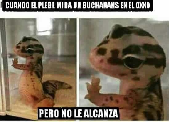 Marcianadas_229_2904160000 (172)