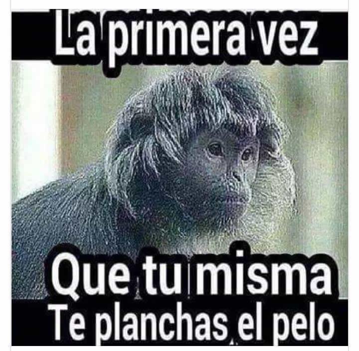 Marcianadas_229_2904160000 (174)