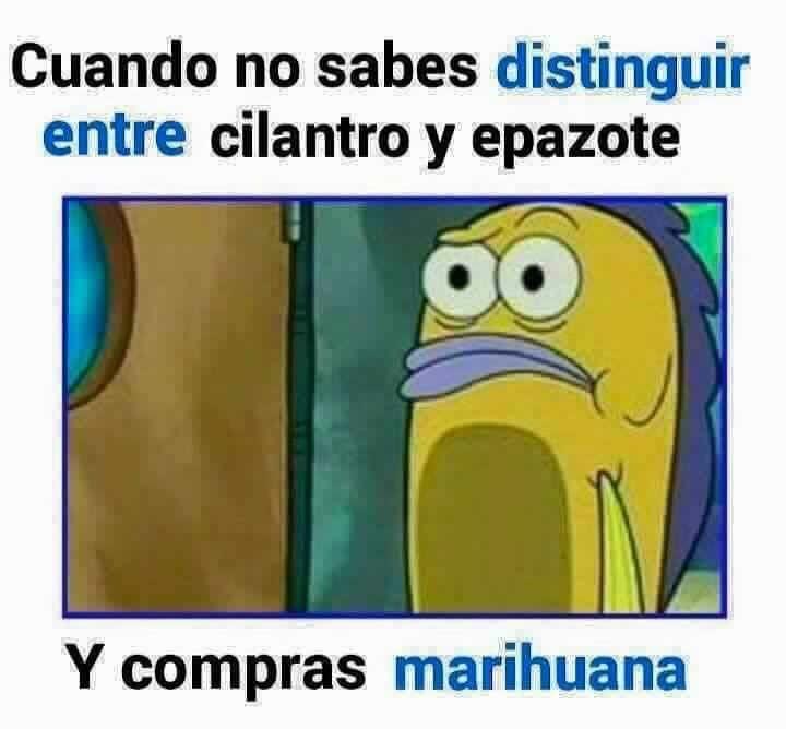Marcianadas_229_2904160000 (205)