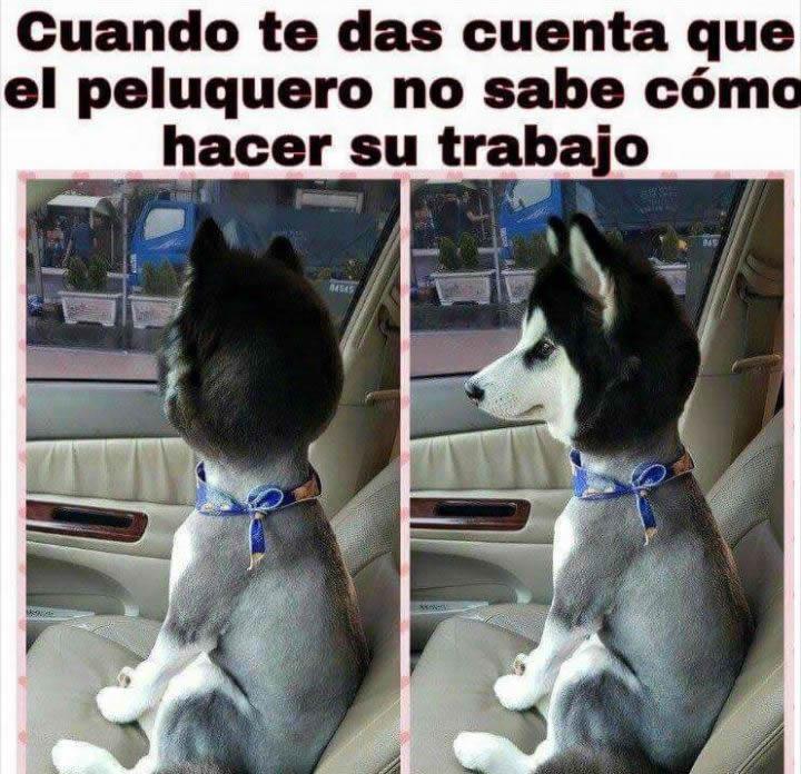 Marcianadas_229_2904160000 (212)