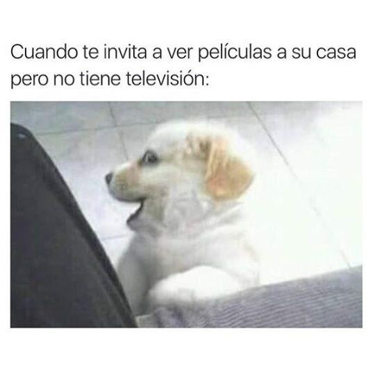 Marcianadas_229_2904160000 (8)