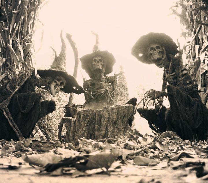 aquelarre brujas huesos 2
