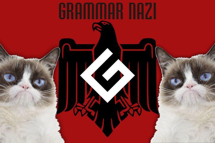 grammar nazi grumpy cat