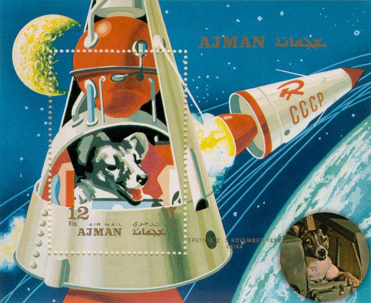 laika perra cosmonauta