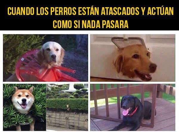 Marcianadas_230_0605160910 (14)