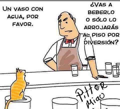 Marcianadas_230_0605161224 (147)