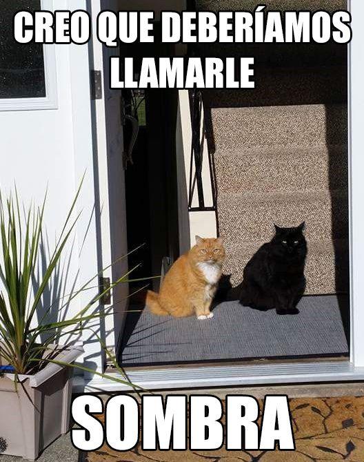 Marcianadas_231_1305161024 (15)