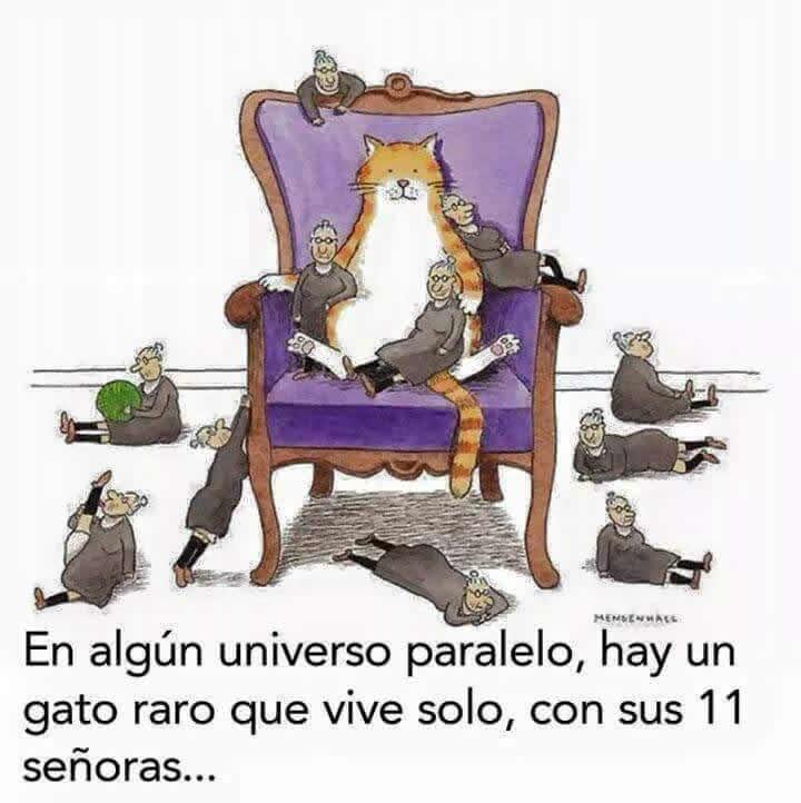 Marcianadas_231_1305161256 (15)